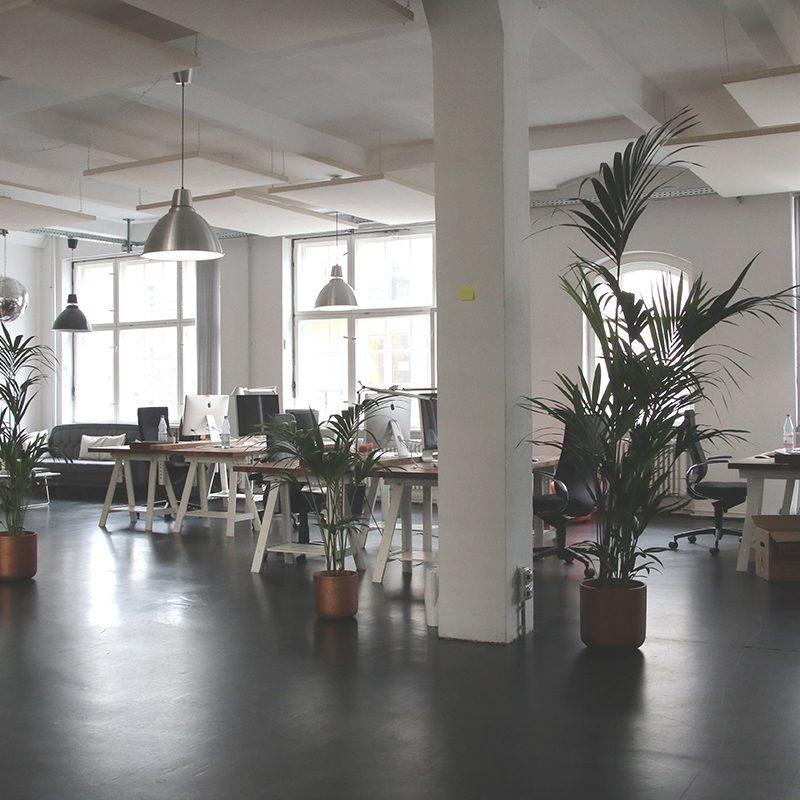 Modern Office Space Idea with Vinyl Flooring.