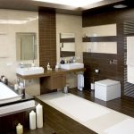 Modern Bathroom Remodel and Design Idea with Stylish Bath